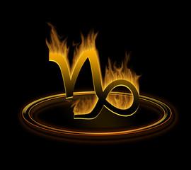 hot zodiac symbol = the capricorn