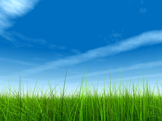 green grass over a blue sky with clouds and plane trails