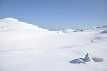 paysage montagne enneigée