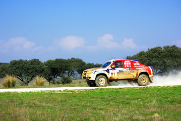 Rally car in competition  at Portugal.