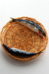 Sardine crude