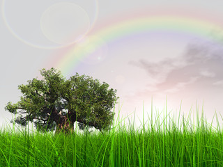 3d green grass over a nice sky with clouds and a rainbow