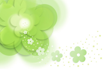 spring_flowers_background_08