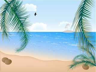 Summer beach with palms