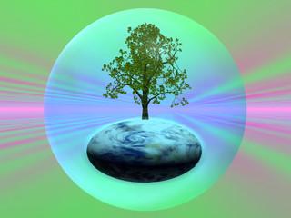 écologie 1