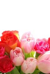 Poster de jardin Macro Spring flowers