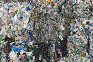 recycle plastic pollution