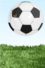 fussball längs