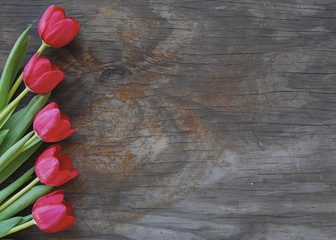 pretty tulips on an old wood background