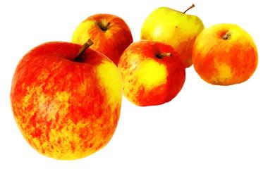 Äpfel - Illustration