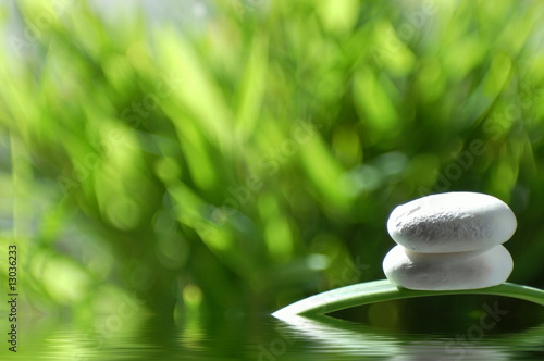 steine im teich stock photo and royalty free images on