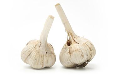 ripe garlic isolated on white background