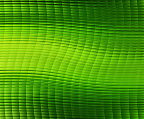 green cells background