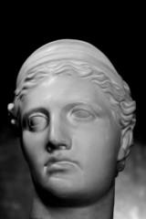 Gypsum head of Venus in low key