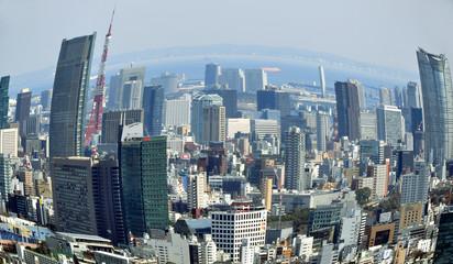 Tokyo panorama fisheye