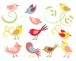 Vögel im Vektorformat
