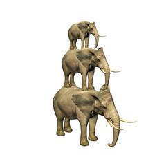 3d elephant isolated on white