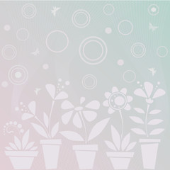 Light blue background with flowers in pots