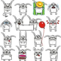Funny rabbits (2)