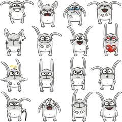 Funny rabbits (1)