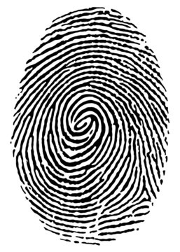 thumbprint over white