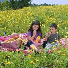 Foto auf Leinwand Picknick boy girl picnic