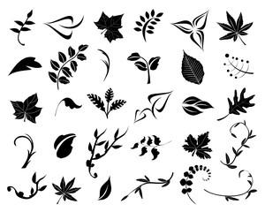 Blätter im Vektorformat