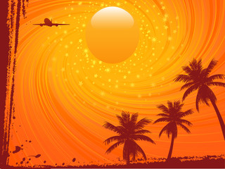 summer sunset sky and palm trees