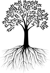 Tree silhouette illustration