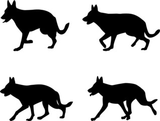 german shepard silhouettes - vector