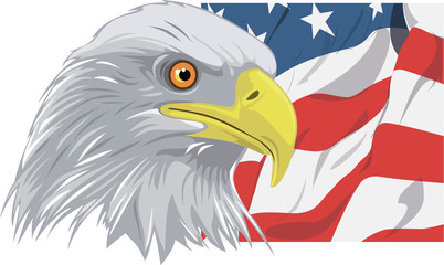 american bald eagle against flag