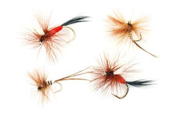 Four trout fishing flies