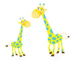 Giraffe family. Vector Illustration.