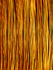 Abstract background from stalks