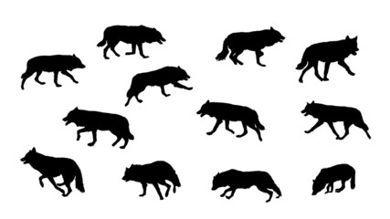 wolf running, vector silhouette collection