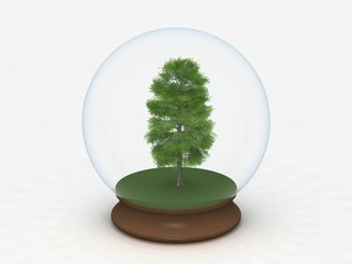 Tree in a Snow globe