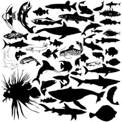 46 pieces of vectoral fish and sea animals silhouettes.