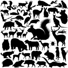 46 pieces of vectoral wild animals silhouettes.