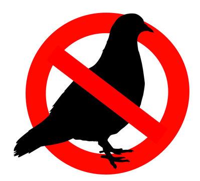 interdit aux pigeons