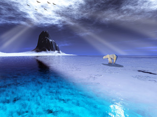The World of Polar Bear