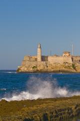 Havana Il Moro with Wave