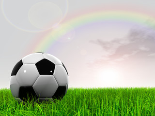 3D black soccer ball,green grass and a blue sky with rainbow