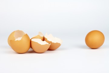 eggs shells and safe egg