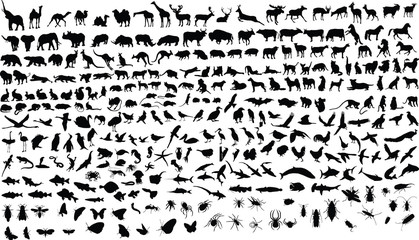 300 vector silhouettes of animals