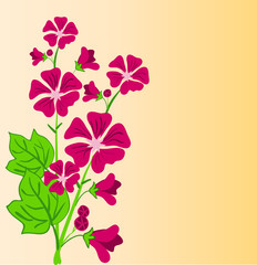 Vector floral background for design