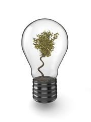 Tree in a light bulb