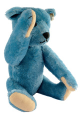 Blue teddy who does not want to be recognized