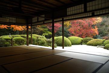 Poster Kyoto 京都
