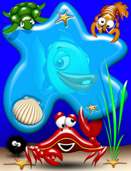 Animali Mare-Sea Animals-Animaux Mer 3