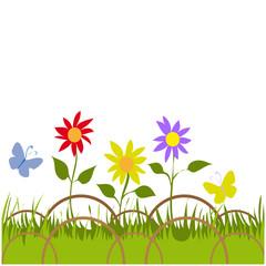 aiuola con fiori
